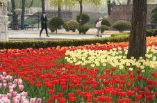 北京天气最新预报:明起气温持续回升 双休日紫外线强